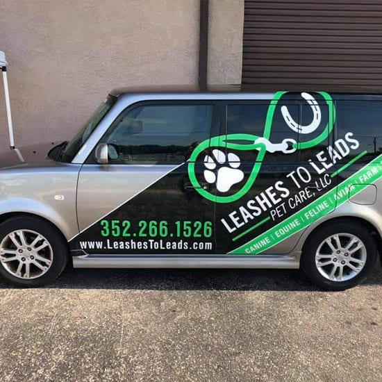 Pet Taxi Leashes to Leads