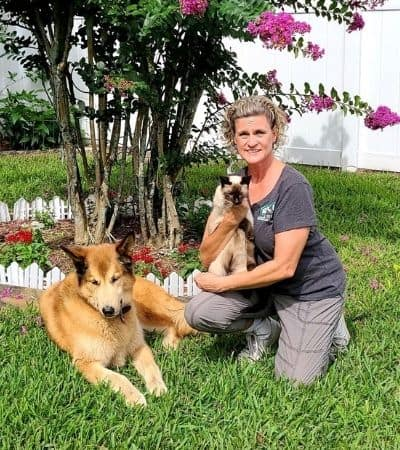 pet-sitter-holly